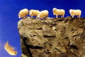 sheepcliff